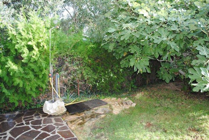 garden, shower shower