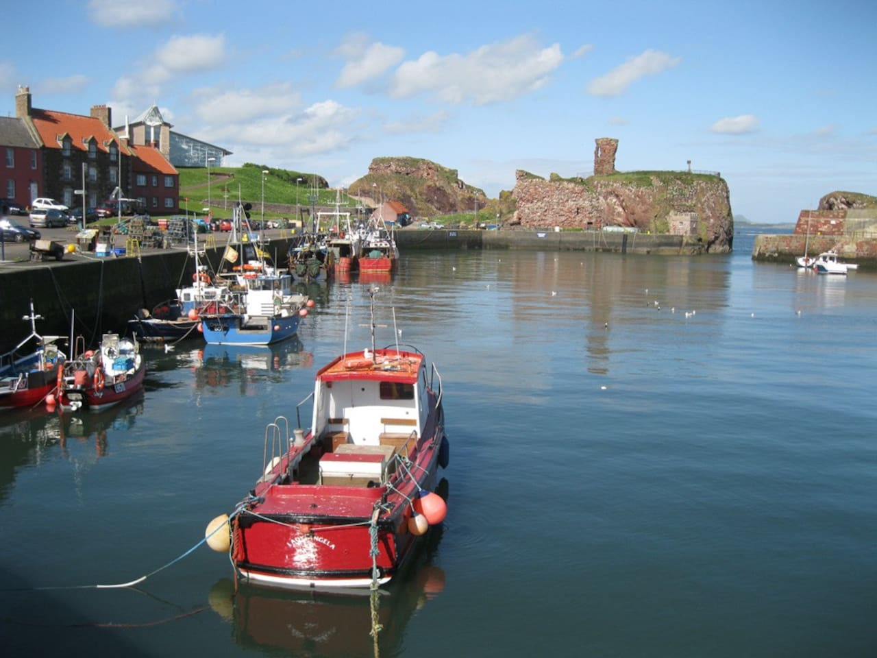Dunbar Harbour 5 minutes walk from the house