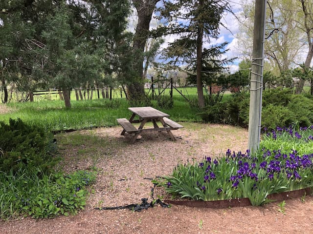 Beautiful gardens and picnic area