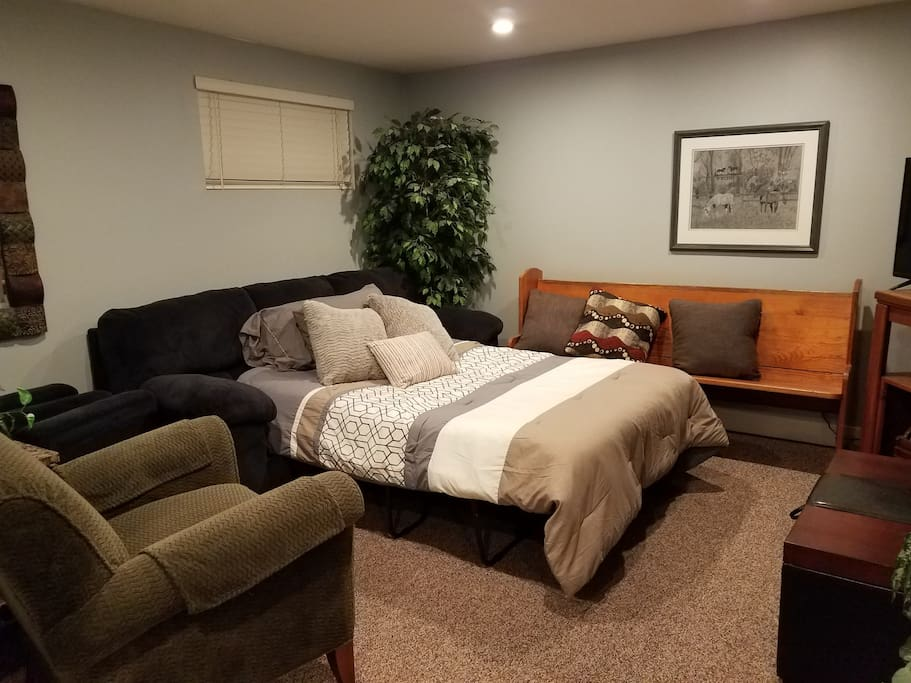 Family Room w/ pull out Queen