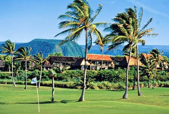 BIG Island  -Sea Mountain Resort