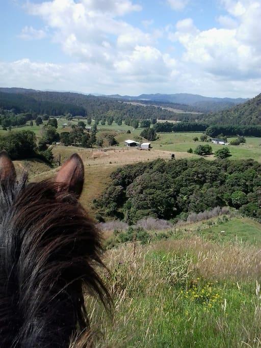 Gorgeous views over the farm.