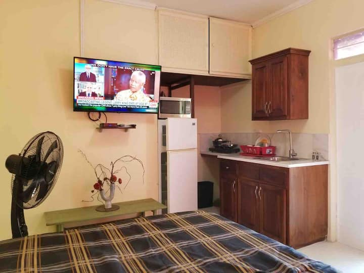 ⭐️Great Price Studio⭐️ flat screen tv + Yardspace!