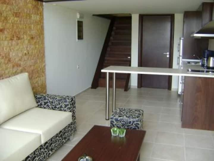 Seadream apartments, only 50m from the beach.