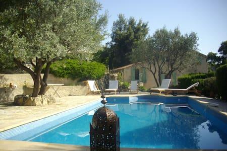 Villa in Provence, sleeps 8 w/pool - Figanières - 別荘