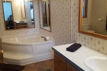 Master bathroom with garden tub & walk-in shower