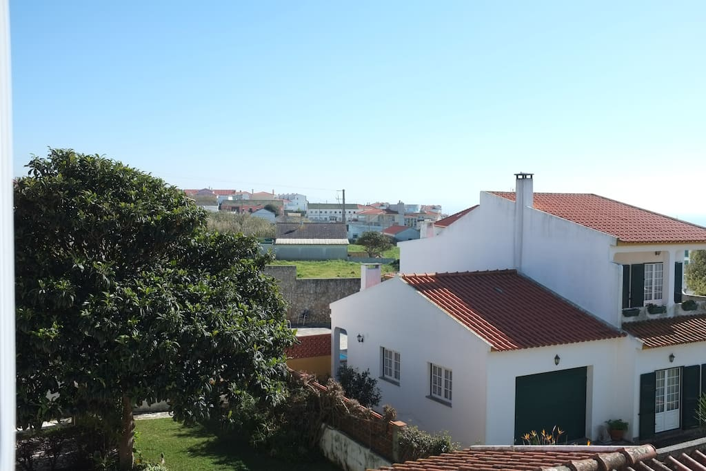 view from the balcony (back)