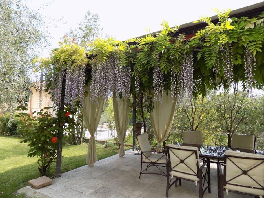 giardino con glicine