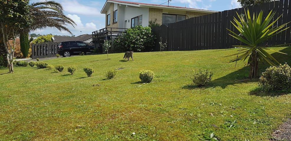 Auckland의 주택