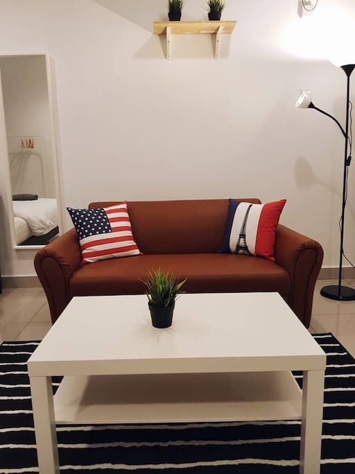 Comfortable Sofa with Stylish Pillow