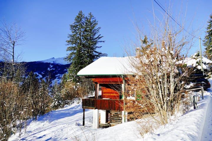 Chalet Oben Hegen - Grindelwald - House