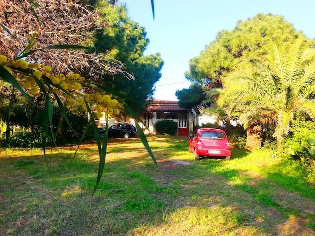 Villa Sole  - Joppolo - House