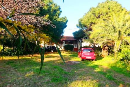 Villa Sole  - Casa