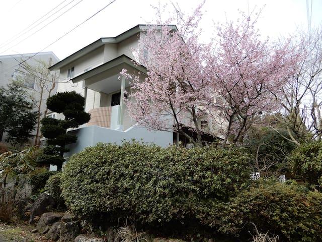 Fujisan IZU 富士山が綺麗に見える別荘 ~ 最大6名~