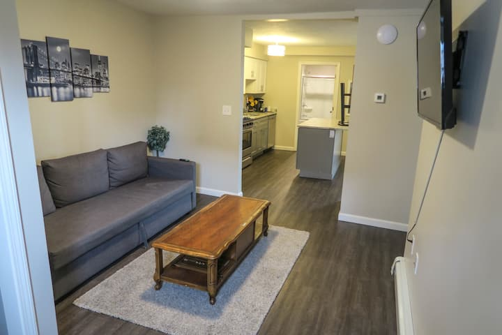 1BR by St. Vincent Hospital & UMass Memorial Med Center