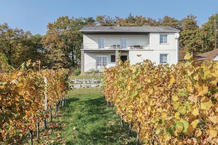 Holiday cottage with 5 bedrooms on 200m² in Eisenberg