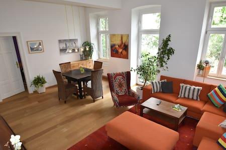 Silent urban style apartment in pedestrian zone - 维也纳 - 公寓
