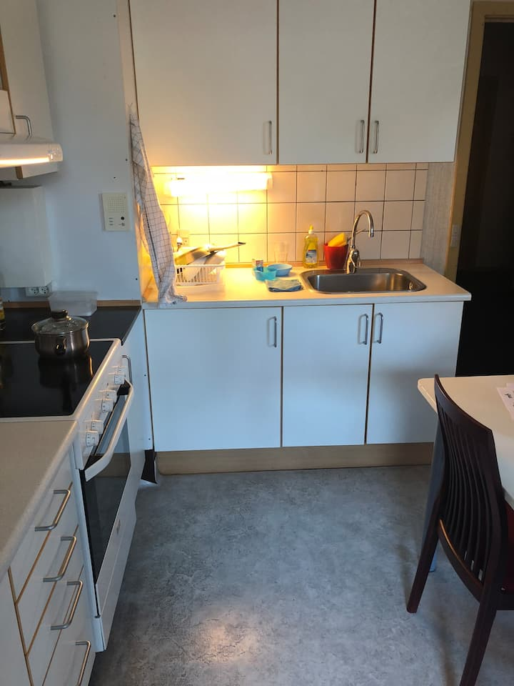 Cosy apartment in central Copenhagen (Nørrebro)