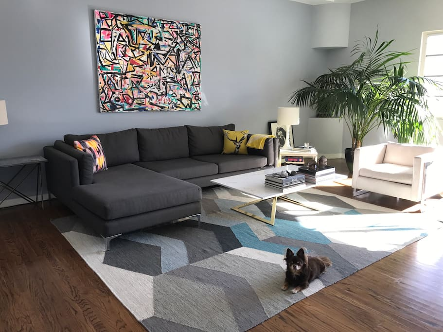 Large bright, sunny living room