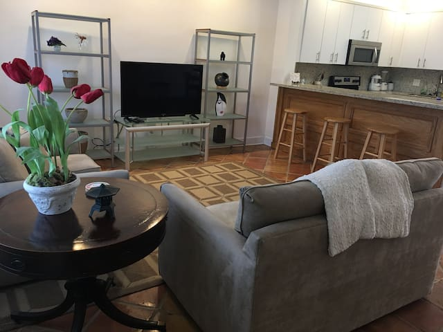 Newly renovated 2 bedroom 2 bath home Coral Gables