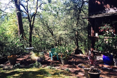 Artist's Retreat in the Wine Country - Forestville - Hus