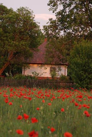 Wunderschönes Landhaus zu vermieten - Táborfalva - Dom