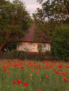 Wunderschönes Landhaus zu vermieten - Táborfalva - Haus