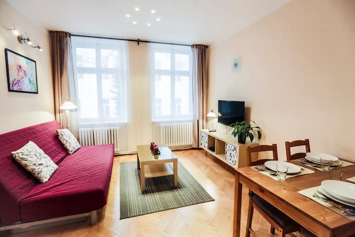 Cozy, new flat 9 in the heart of Prague, free wifi