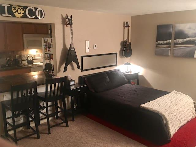 Amazing Studio Apartment in the Heart of Denver. - Denver - Byt