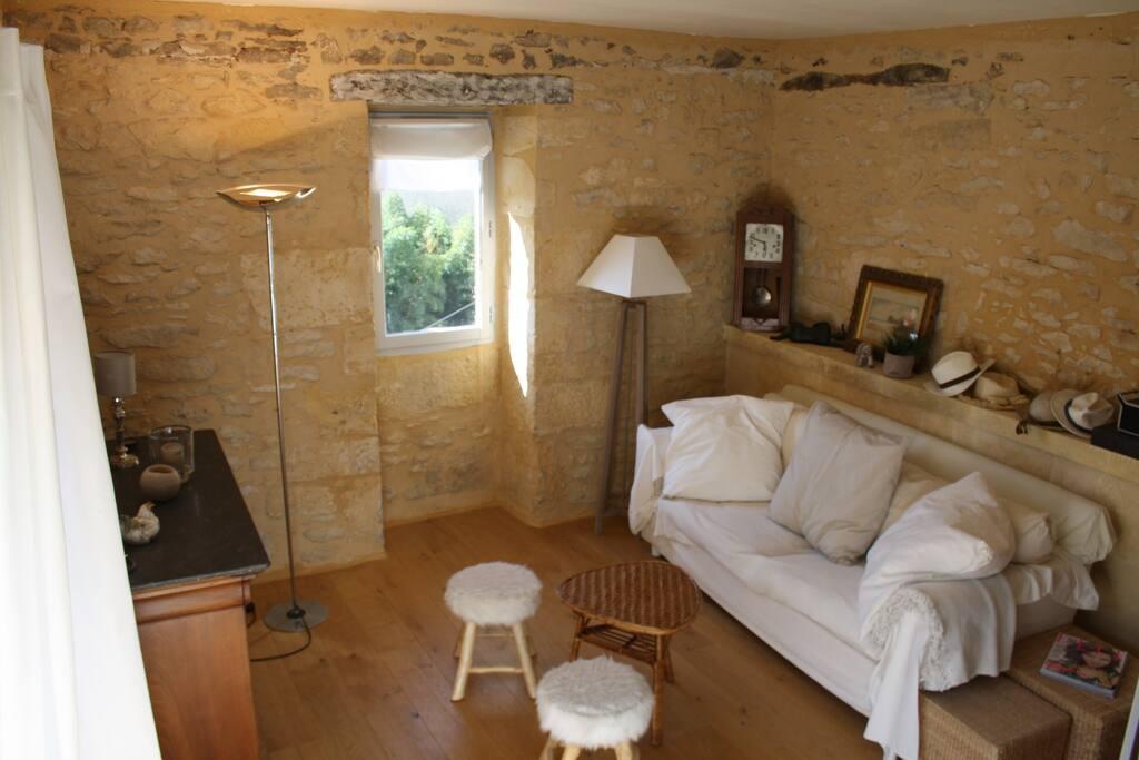 Le confortable salon / the comfortable living room