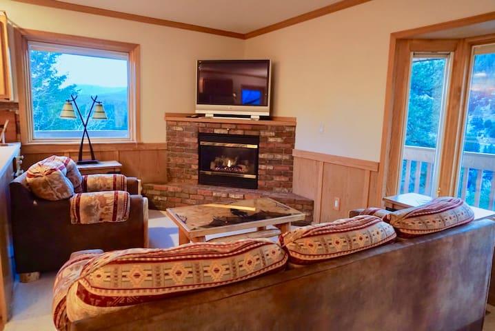 Cozy Colorado Mountain Guest Suite