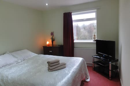 Cosy room in friendly house with sky TV - Bristol