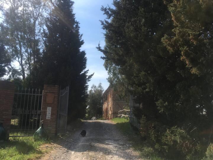 Bilocale con giardino Angiolori