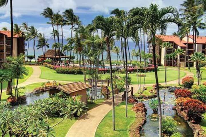 Romantic Maui Hawaii Beach Front Vacation