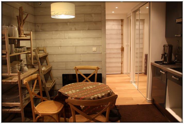 Joli studio de montagne - Isola - Apartment
