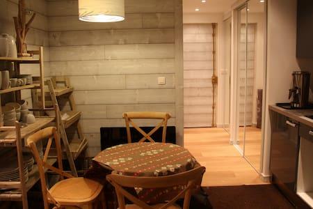 Joli studio de montagne - Isola - Apartemen