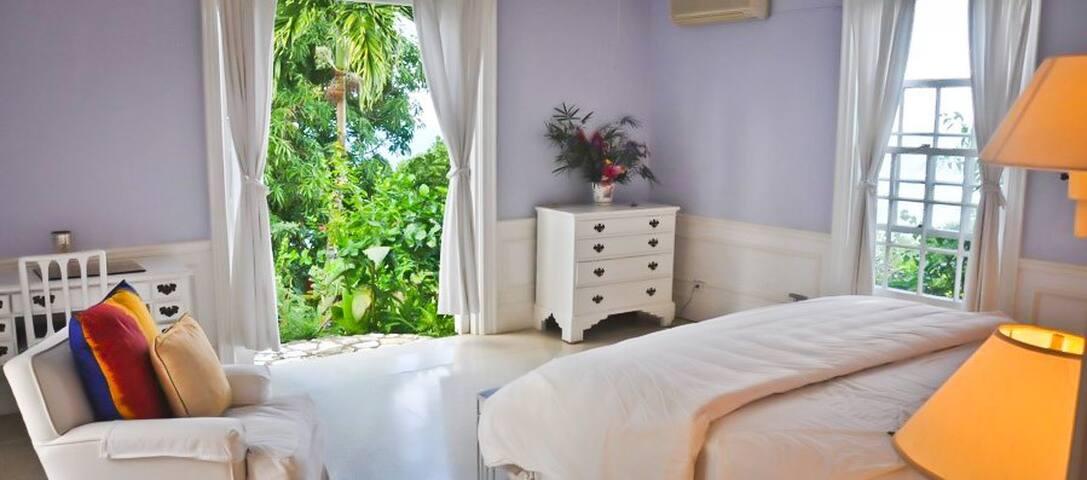 Birdie 'ill - Port Antonio - Villa