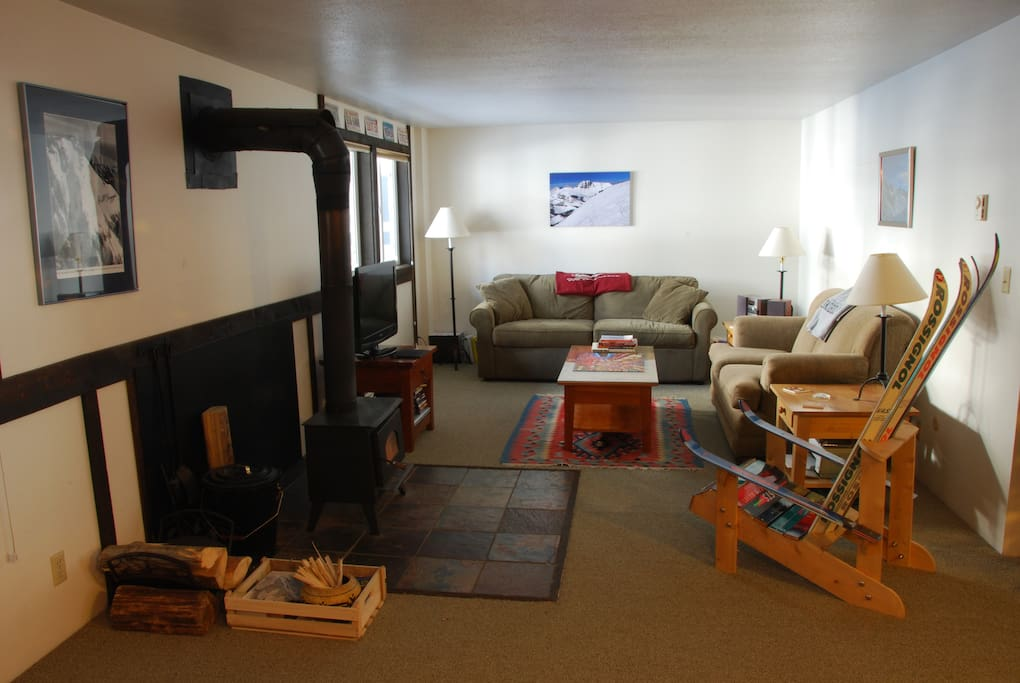 Pull-out couch, wifi, TV with DVD player and Chromecast (no cable), wood stove