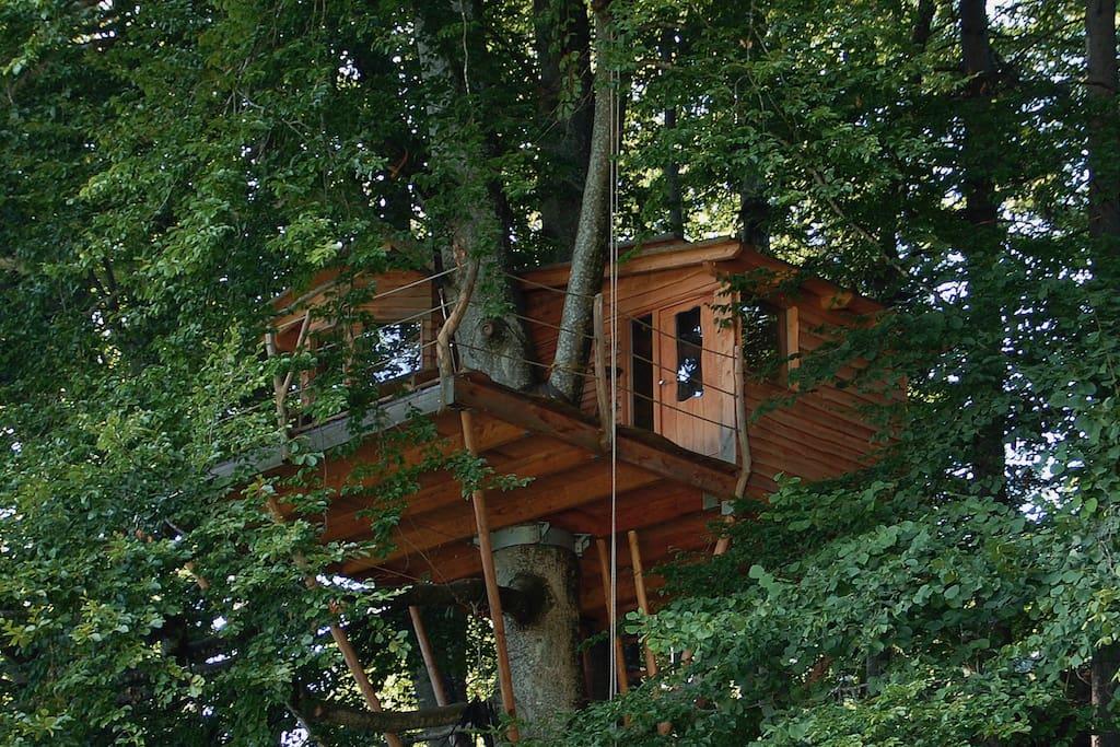 baumhaus mit bodensee und alpenblick baumh user zur miete in deggenhausertal baden. Black Bedroom Furniture Sets. Home Design Ideas