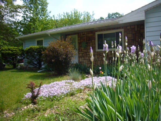 Clear View Cottage / pet friendly - Three Rivers - Outro
