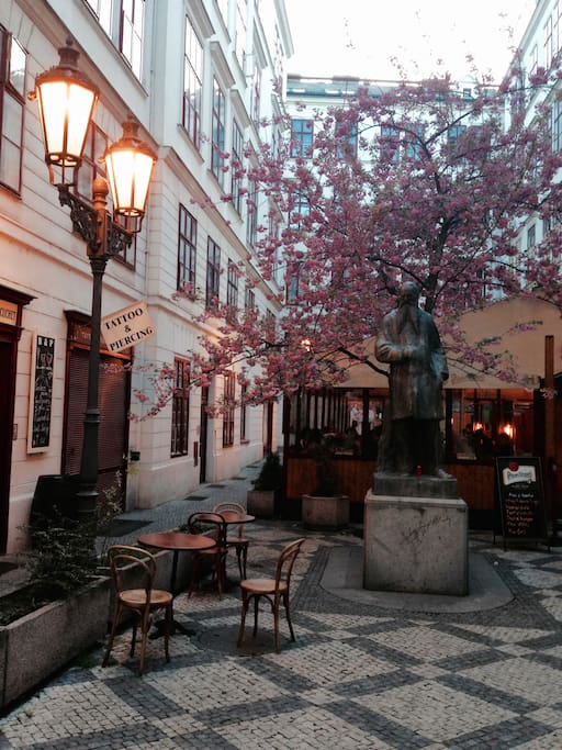 courtyard in spring