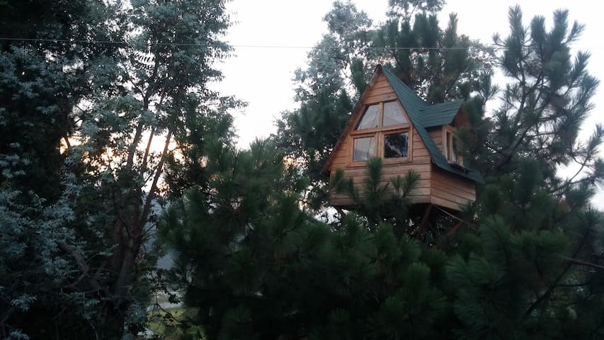 Sleep in a Treehouse!