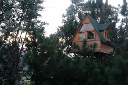 Sleep in a Treehouse! - Quezaltenango - Casa en un árbol