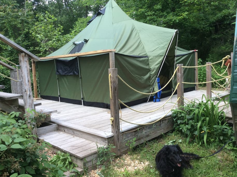 Great tent with lots of ventilation.