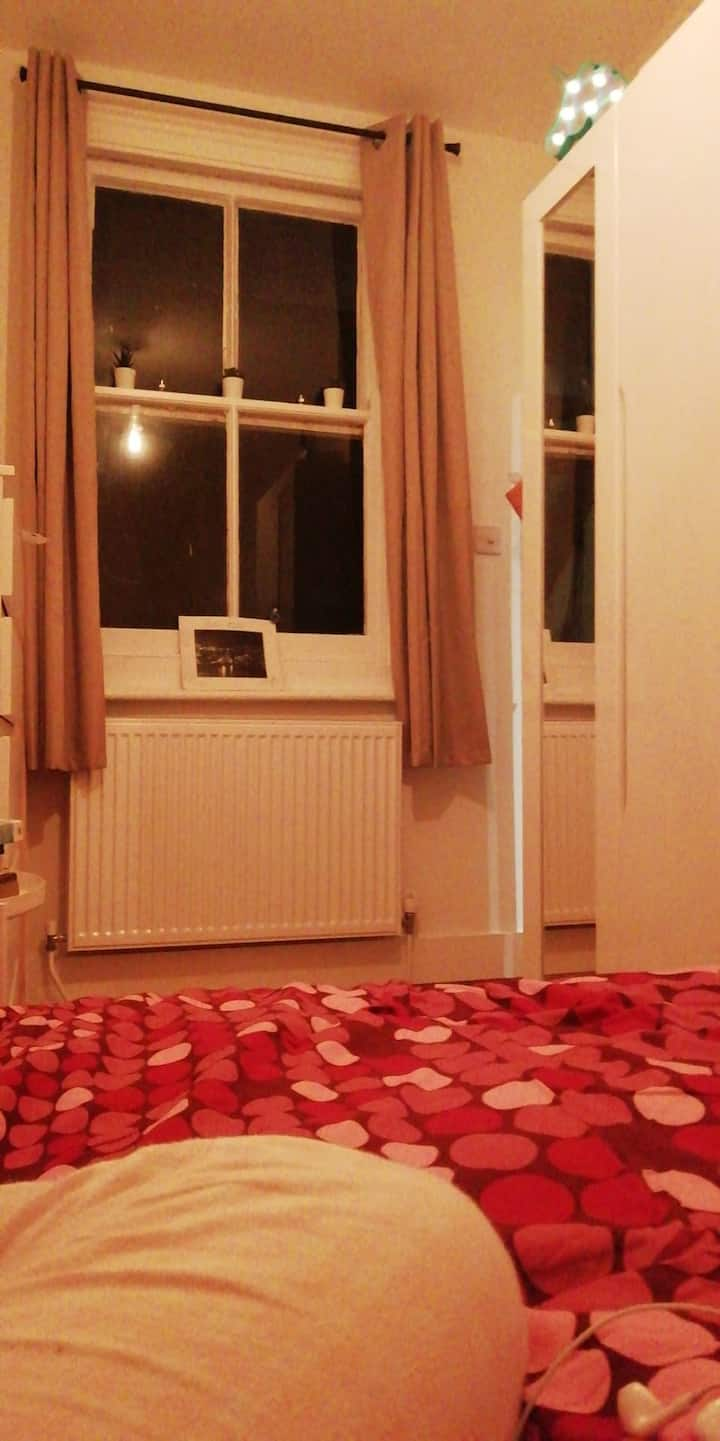 Room close to city centre Albion Hill