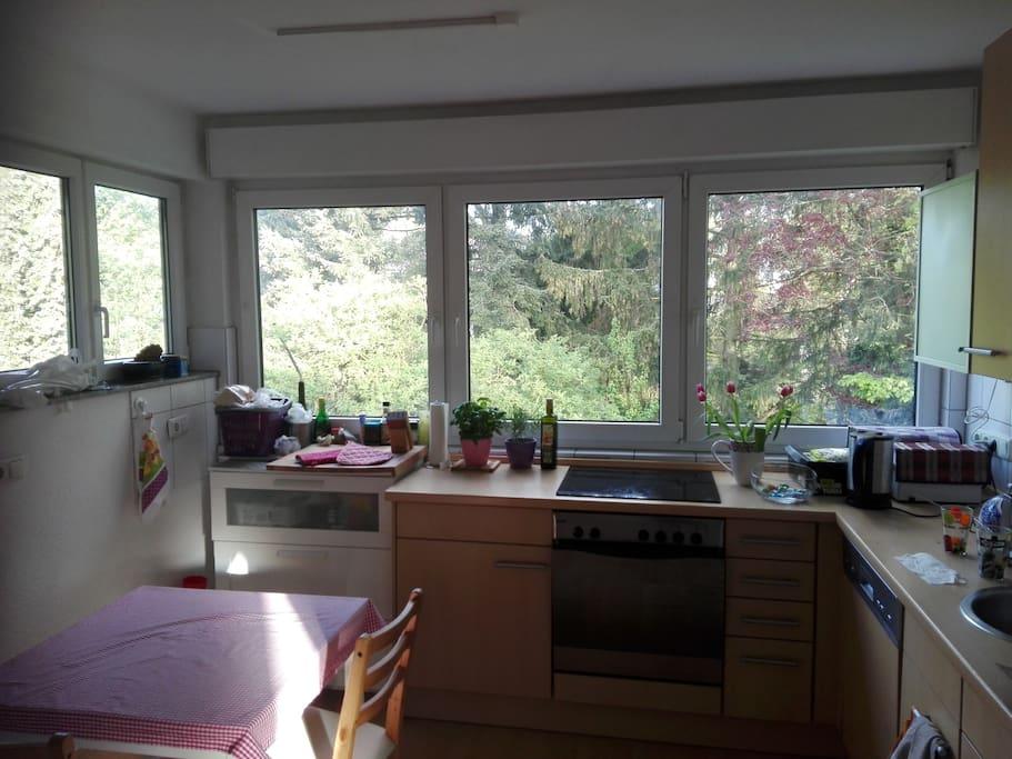 Küche mit einem grünem Ausblick
