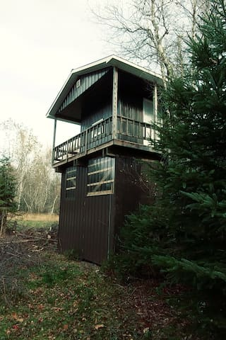 view on the other side of the treehouse