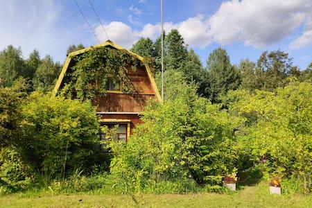 Дом в деревне Холюны в окружении леса, озёр и рек