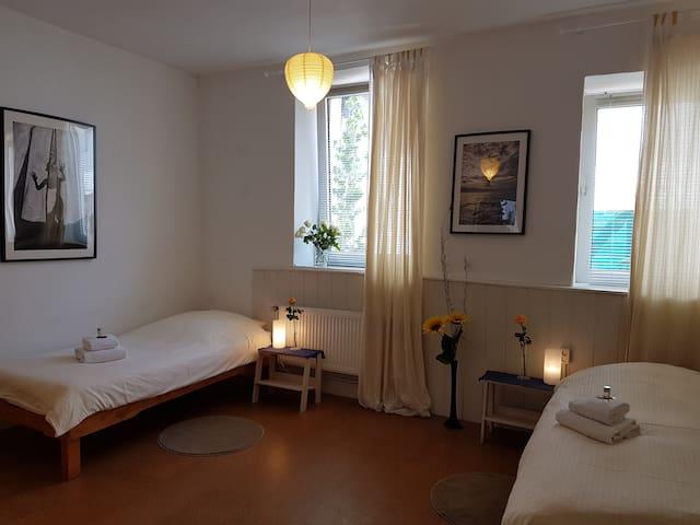 Tulpe Room, in historical villa on the Rhein