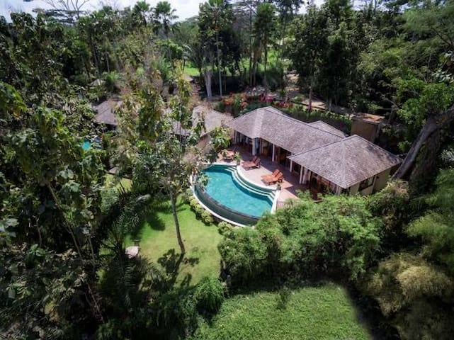 Two Bedroom Villa in Lush Jungle w/Infinity Pool